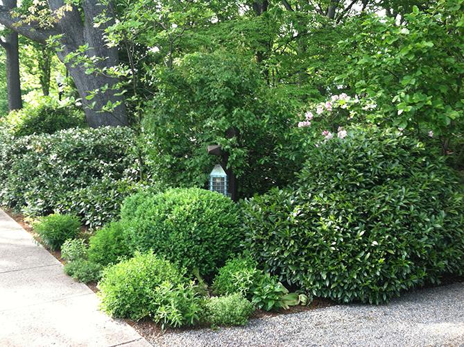 Cottage Entrance 1